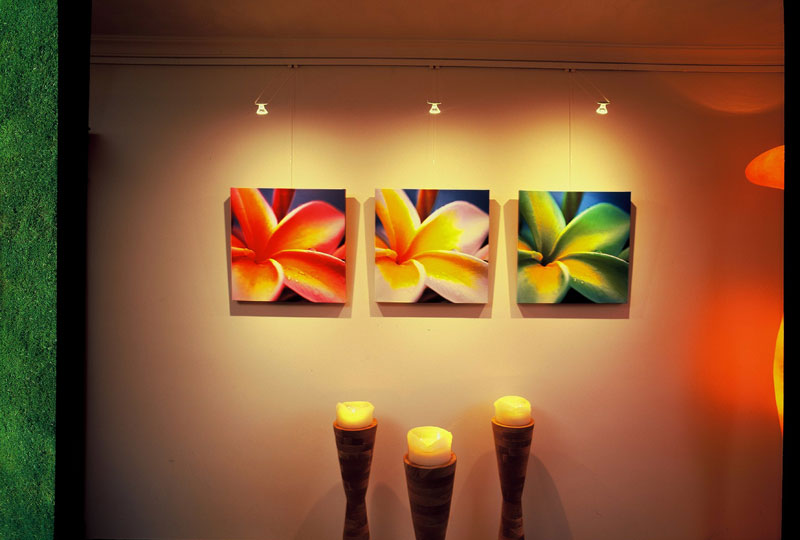 Led Art Lighting STAS Picture Hanging Systems